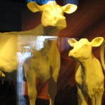 butter sculptures in Dairy Products building, ice cream also available here