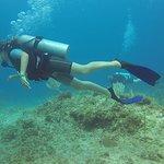 Sea Pro Divers