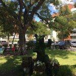 Photo of Shady Grove
