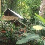 Photo of Cariblue Beach & Jungle Resort