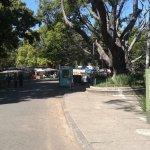 Photo of Parque Municipal Americo Renee Giannetti