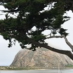 Photo of Morro Rock
