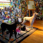 Photo de The Dog Chapel