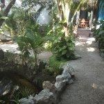 Tunich Jungle Cabañas Foto