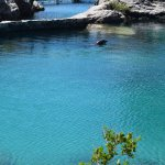 Dolphin enclosure on Blue Lagoon Island.