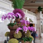 The flower arrangement in the lobby
