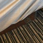 ภาพถ่ายของ Baymont Inn & Suites Madison West/Middleton WI West