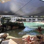 Photo of Hotel Grand Chancellor Palm Cove