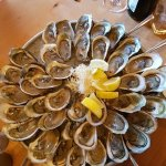 fresh chucked oysters