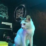 Zdjęcie 054 Cafe'