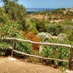 Photo de Azienda Agrituristica Punta Lizzu