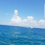 Foto de Puerto Aventuras Marina