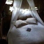 Le nid douillet de la cabane des Elfes