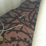 Broken carpet with hidden plug