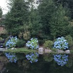 Lovely pond with relaxed seating on dock