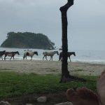 Photo de Hotel Villas Playa Samara