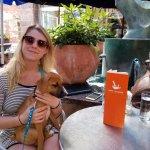 Pet Friendly Patio - Outdoors