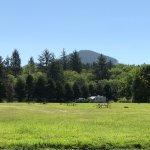 Foto di Circle Creek RV Park