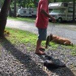 Foto de Gettysburg Campground