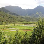 Photo of Hanalei Valley Lookout