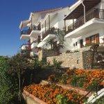 Photo of Hotel Villa Alexis