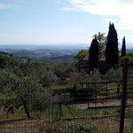 Photo of Agriturismo Il Castagnolino