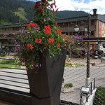 Photo of Chalet Laura Lodge Hotel
