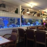 The Station House - Saltwater Aquariums separate seating areas