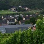 Kloster Machern Weincabinett Foto