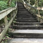 Stairs, Stairs, Stairs- no need to do the stair master today.