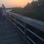 beginning of long pier