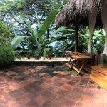 Photo of Casa Marimba