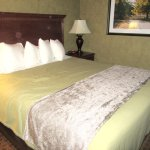 King Sized Bed, Best Western Plus Black Oak, Paso Robles, CA