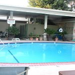 Swimming Pool, Best Western Plus Black Oak, Paso Robles, CA