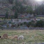 Foto de Colca Lodge Spa & Hot Springs - Hotel