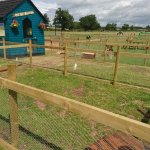 Amerton farm outdoor area