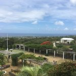 Overlooking the vine garden and ocean from our table.