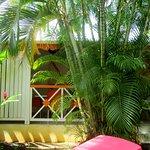 extérieur de notre bungalow, la végétation nous protège des regards indiscrets