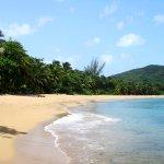 La magnifique plage de grande anse, très calme,peu de monde et beaucoup de poissons colorés...