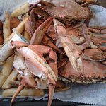 Blue crabs for lunch