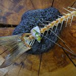 Bocadillo de pescado ahumado