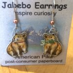 a pair of earrings I wanted to buy... I love Pikas