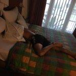 Foto de Hotel Gazebo Meno