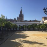 The Giralda from the plaza