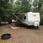 Campsite #316
