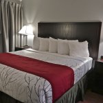 Blackstone Lodge and Suites resmi