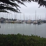 Berkeley Marina in the morning!