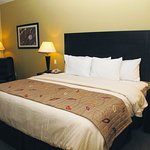 Photo of La Quinta Inn & Suites Austin - Cedar Park