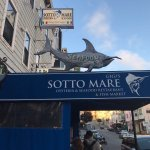 Photo of Sotto Mare Oysteria & Seafood