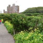 Castle of Mey and walled garden